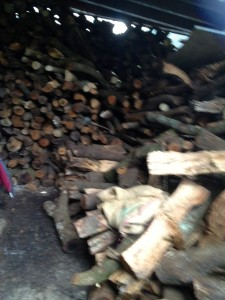 All the wood to produce the Magic